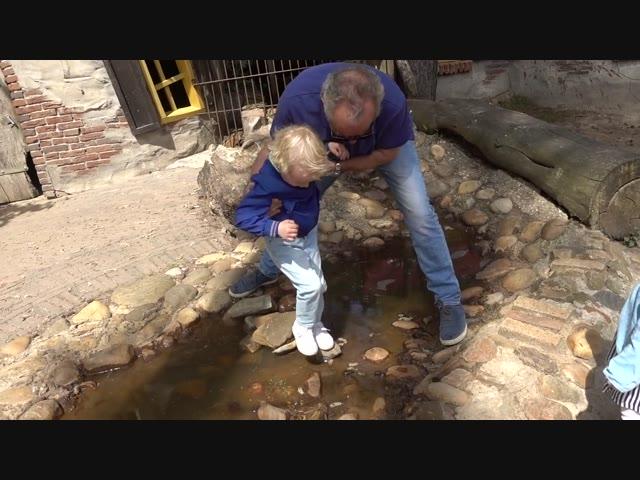 HET GROTE KABOUTERBOS | Bellinga Vlog #640