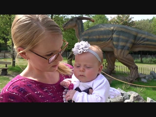 NOOiT iN DiNOLAND GEWEEST   Bellinga Familie Vlog #1003